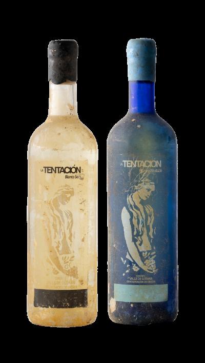 Vino Blanco envejecido en una Bodega submarina en Tenerife | El Rebusco Bodegas | Vino blanco afrutado